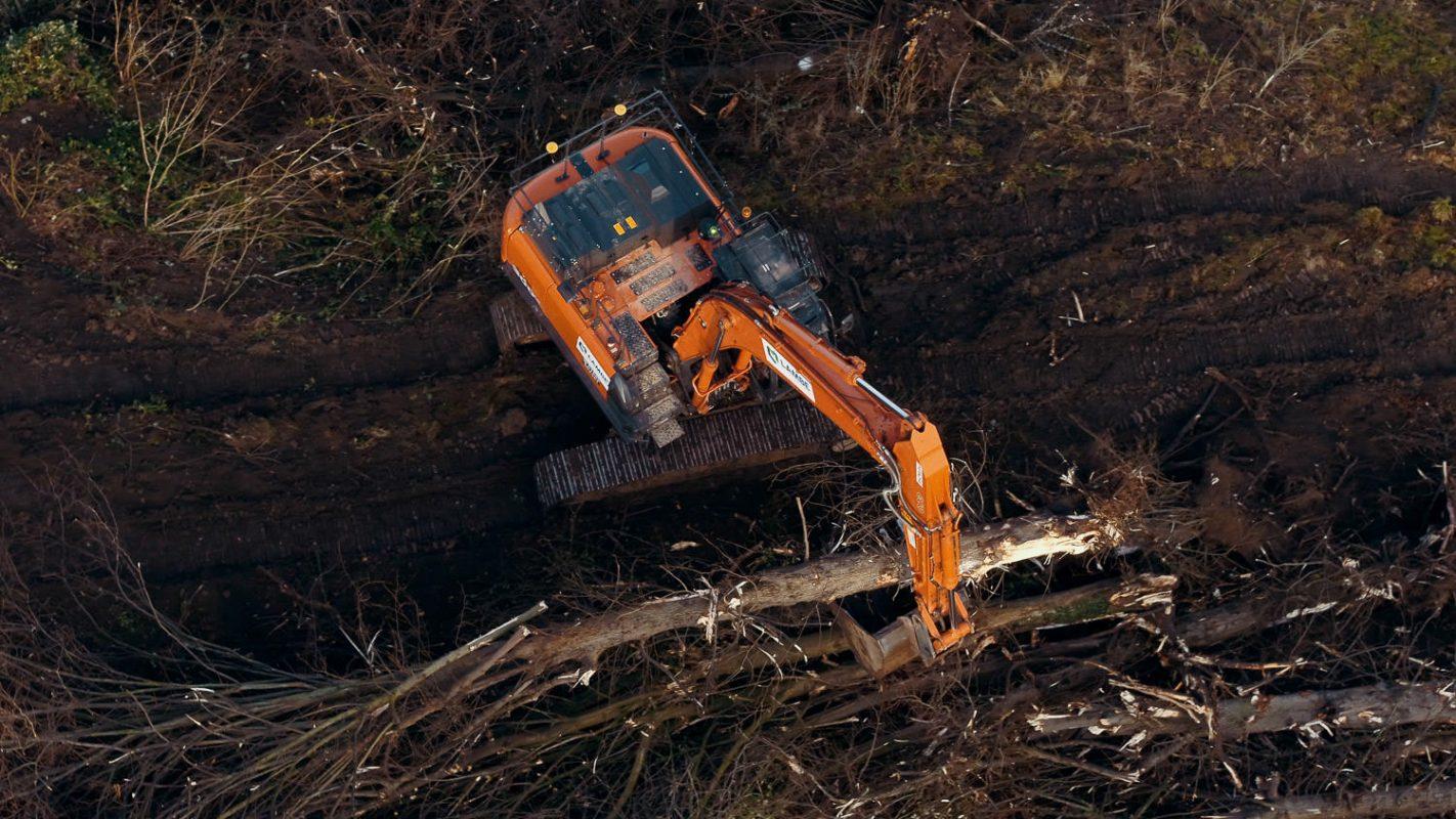 digger dragging tree